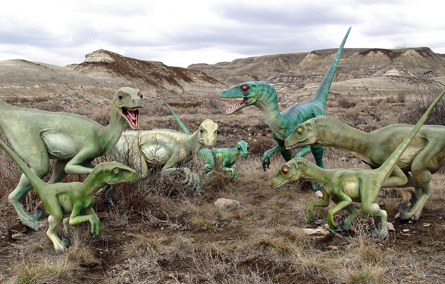 Multiple hand sculpted velociraptors on display in Alberta badlands