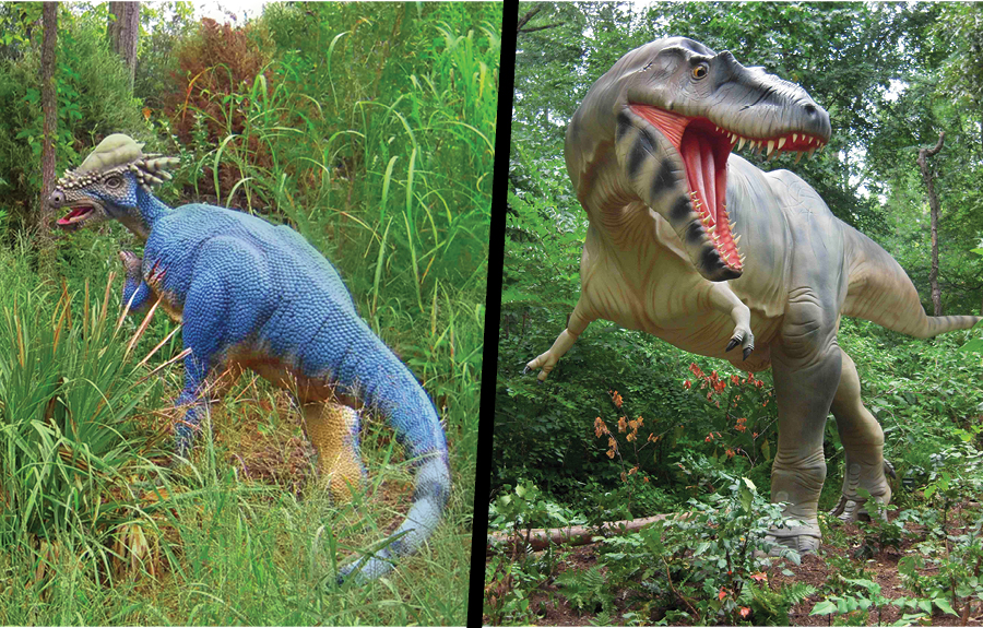 Side by side of pachycephalosaurus and albertosaurus sculptures in zoo exhibit